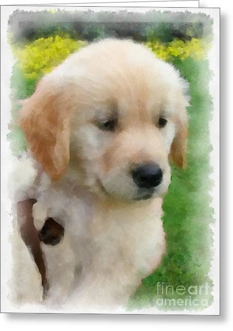 Golden Puppy Owen Greeting Card by Betsy Cotton