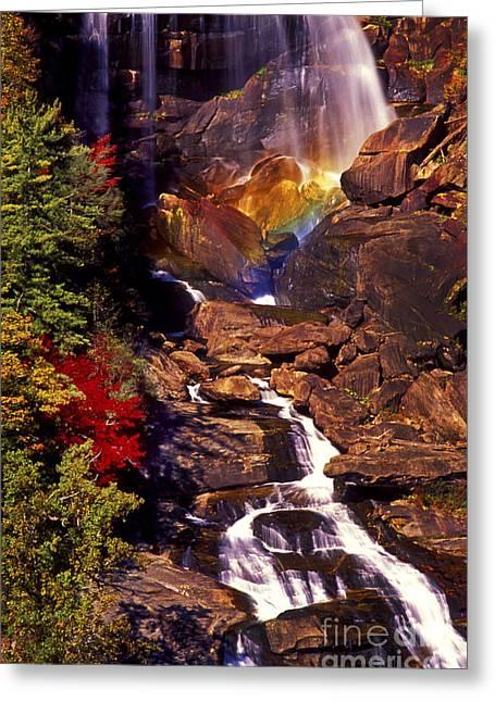 Golden Rainbow Greeting Card