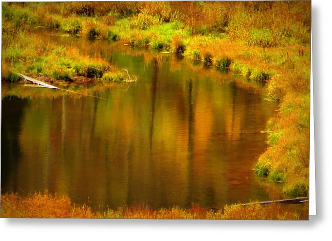 Greeting Card featuring the photograph Golden Reflections by Karen Shackles