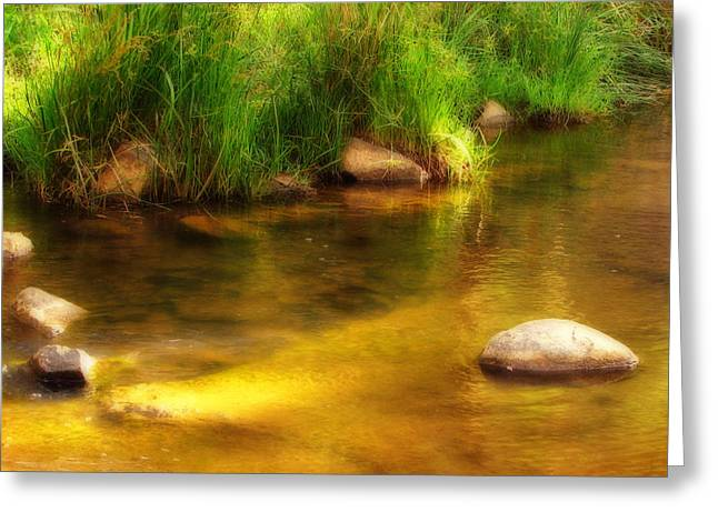 Golden Reflections Greeting Card by Michelle Wrighton