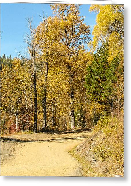 Golden Road 2 Greeting Card by Curtis Stein