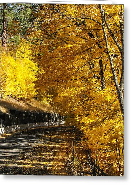 Golden Road Greeting Card by Curtis Stein