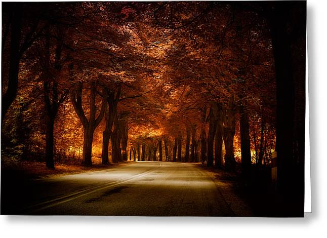 Golden Road Greeting Card by Marek Czaja