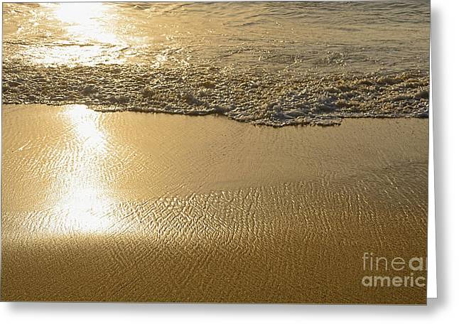 Golden Seashore By Kaye Menner Greeting Card by Kaye Menner