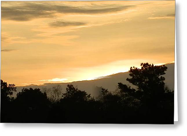 Golden Sky Greeting Card by Ione Hedges