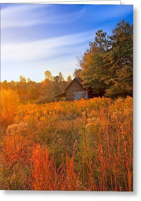 Golden Sunlight On A Fall Morning - North Georgia Greeting Card by Mark E Tisdale