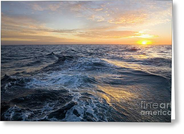 Golden Sunrise And Waves Greeting Card