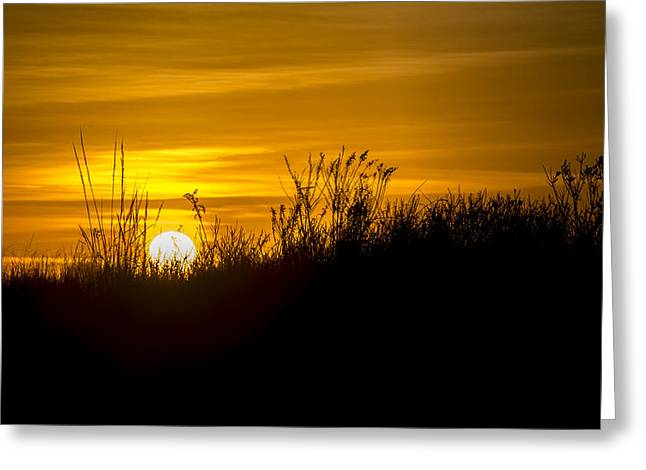 Golden Sunrise Greeting Card by Andy Smetzer