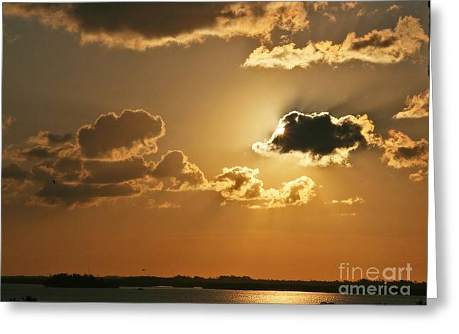 Golden Sunrise Greeting Card by Joan McArthur