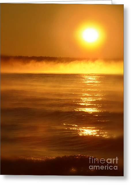 Golden Sunrise Over The Water Greeting Card