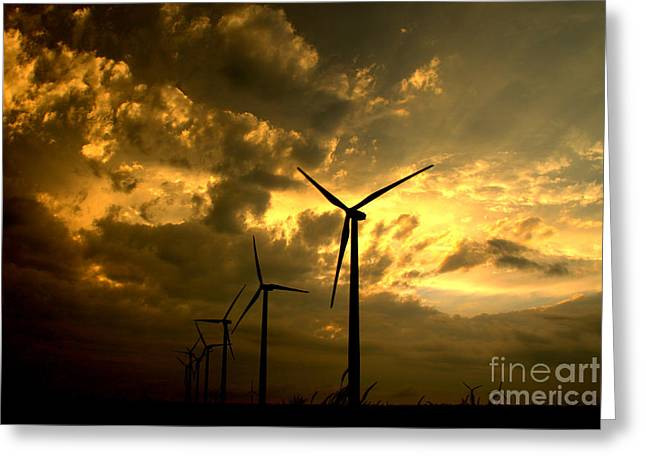 Greeting Card featuring the photograph Golden Sunset 2 by Jim McCain