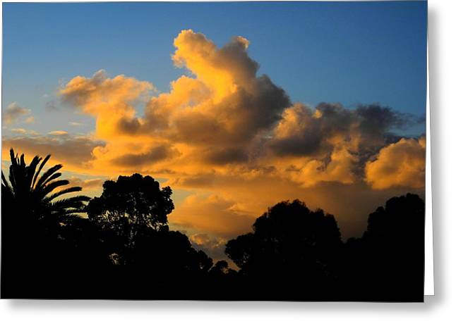 Golden Sunset Greeting Card by Mark Blauhoefer