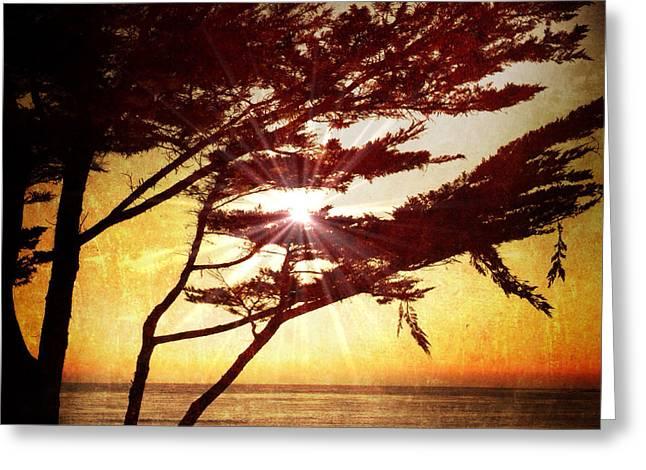 Golden Sunset On Carmel Beach Greeting Card by Charlene Mitchell
