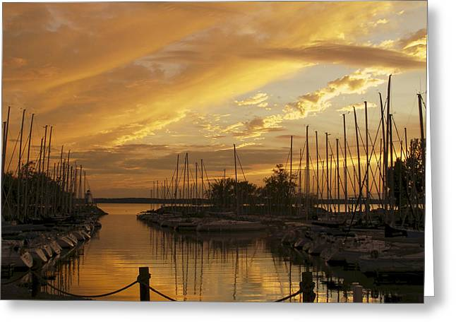 Golden Sunset With Sailboats Greeting Card