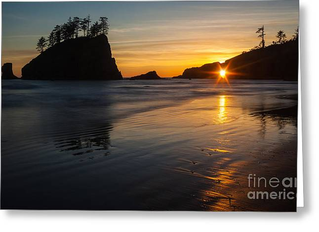 Golden Washington Coast Evening Greeting Card by Mike Reid