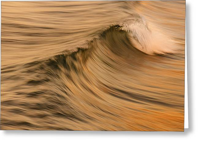 Golden Wave Of Hawaii Greeting Card by Tin Lung Chao
