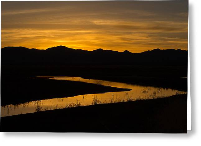 Golden Wetland Sunset Greeting Card by Beverly Parks