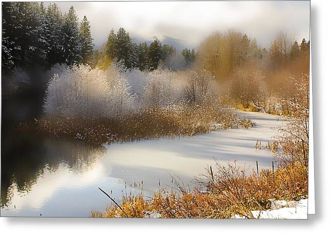 Golden Winter Greeting Card by Sonya Lang