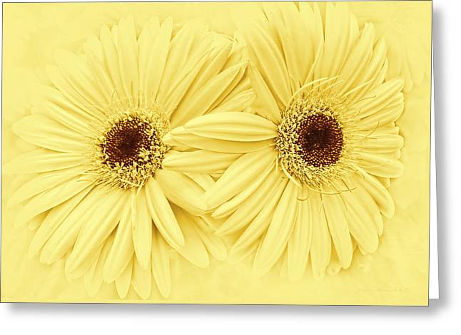 Golden Yellow Gerber Daisy Flowers Greeting Card by Jennie Marie Schell