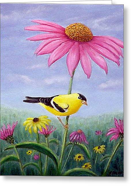 Goldfinch And Coneflowers Greeting Card