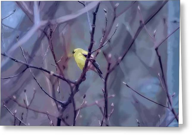 Goldfinch In The Woods 2 Greeting Card