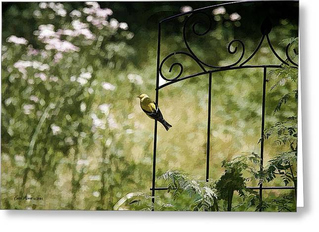 Goldfinch On The Lookout -19 Greeting Card