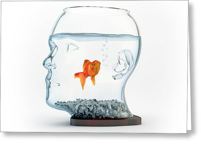 Goldfish In A Bowl Greeting Card