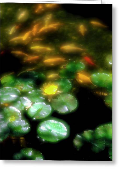 Goldfish Swimming By Lily Pads In Pond Greeting Card by Panoramic Images