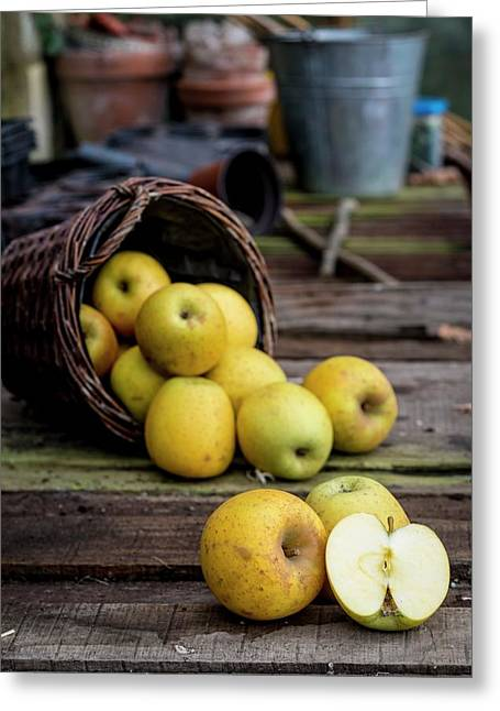 Goldrush Apples Falling From A Basket Greeting Card