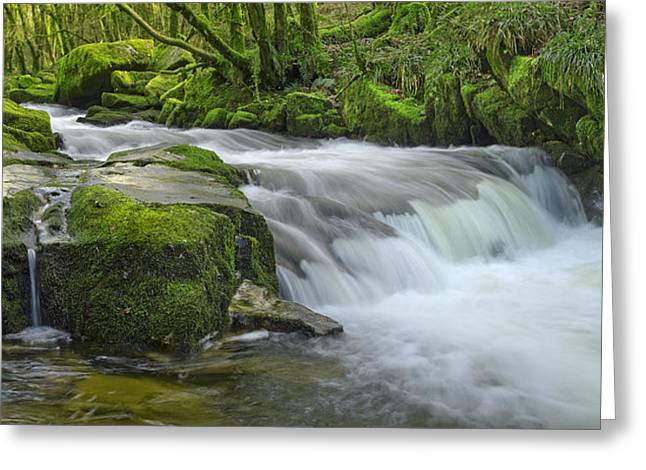 Golitha Falls Greeting Card