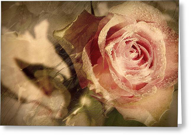 Gone With The Wind Romantic Rose Close-up Greeting Card