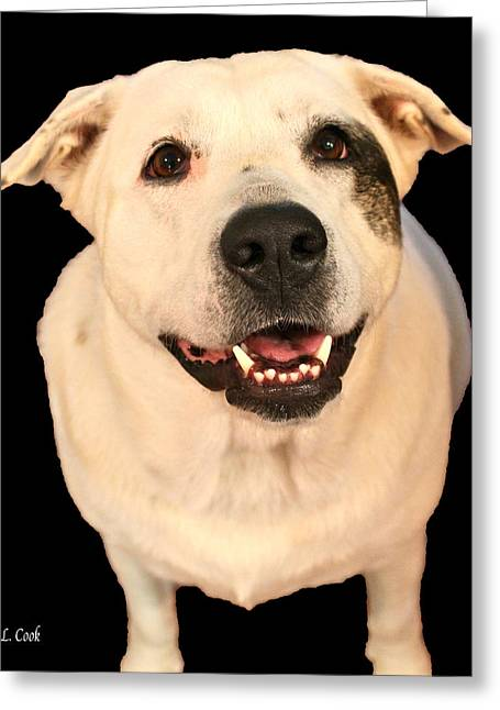 Good Dog Greeting Card by Bellesouth Studio