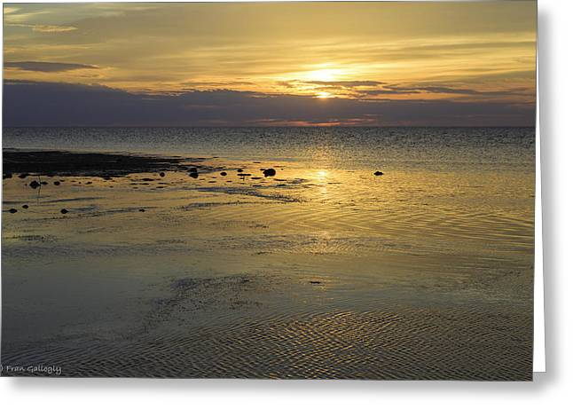 Good Morning Florida Keys V Greeting Card
