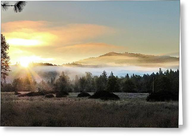 Greeting Card featuring the photograph Good Morning by Julia Hassett