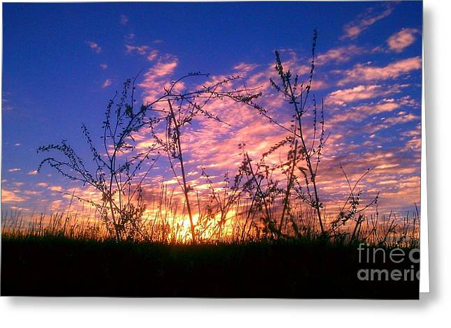 Greeting Card featuring the photograph Good Morning Laramie by Chris Tarpening