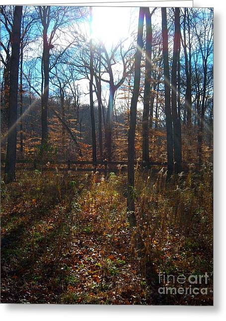 Greeting Card featuring the photograph Good Morning by Pamela Clements