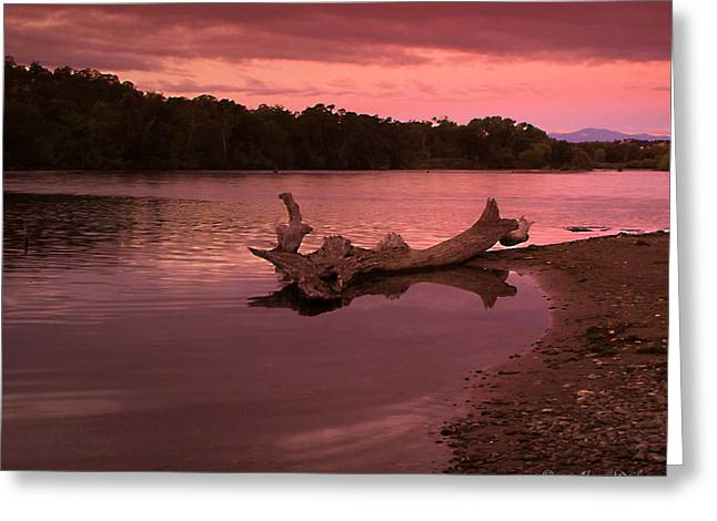 Good Morning Sacramento River Greeting Card by Joyce Dickens
