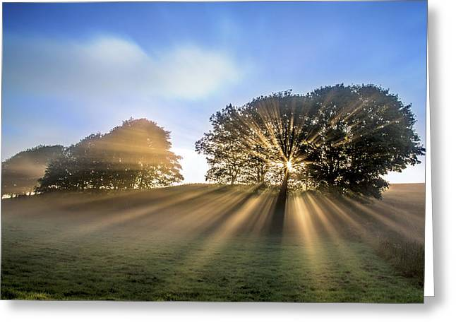 Good Morning To A Great Day. Greeting Card