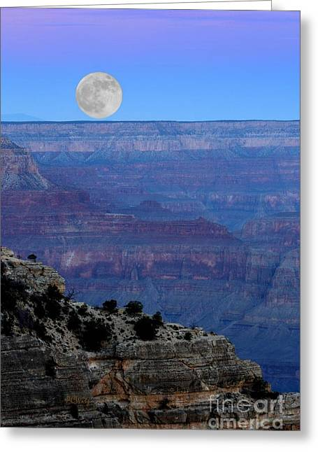 Good Night Moon Greeting Card