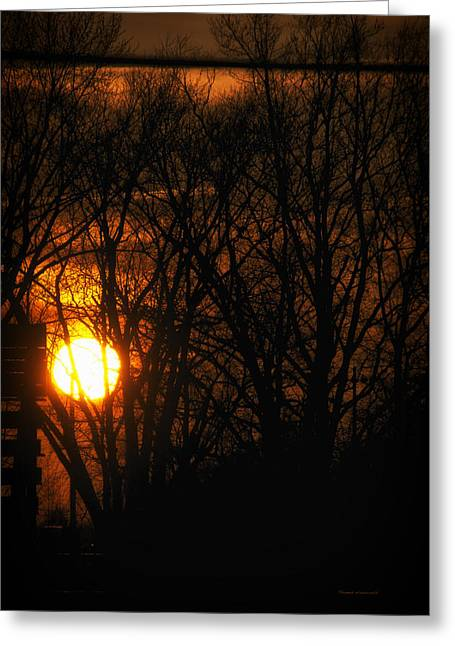 Photography By Tom Woolworth Greeting Cards - Good Night Sunshine Greeting Card by Thomas Woolworth