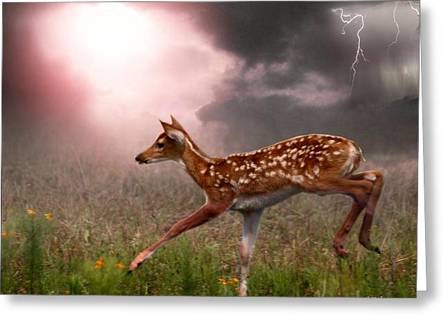 Goodbye Bambi Greeting Card by Bill Stephens