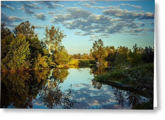 Greeting Card featuring the photograph Goodbye Sunny Day by Dmytro Korol