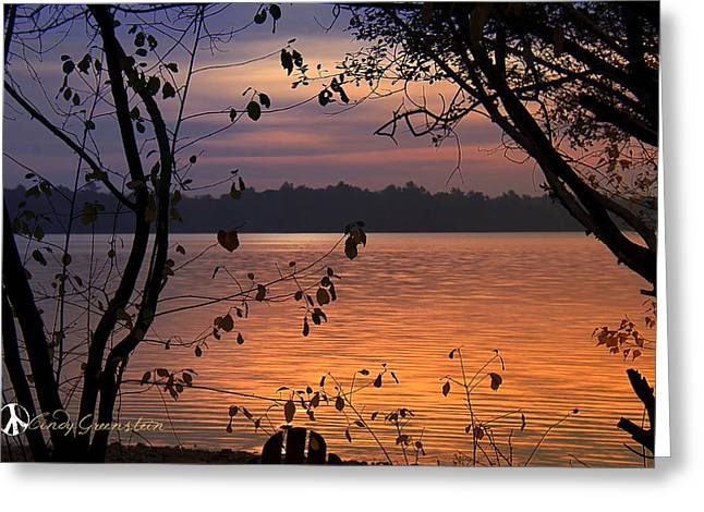 Greeting Card featuring the photograph Goodnight Lake by Cindy Greenstein