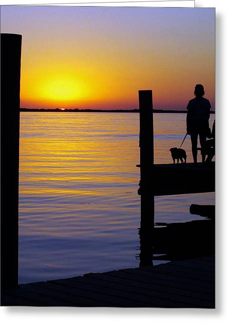 Goodnight Sun Greeting Card by Karen Wiles