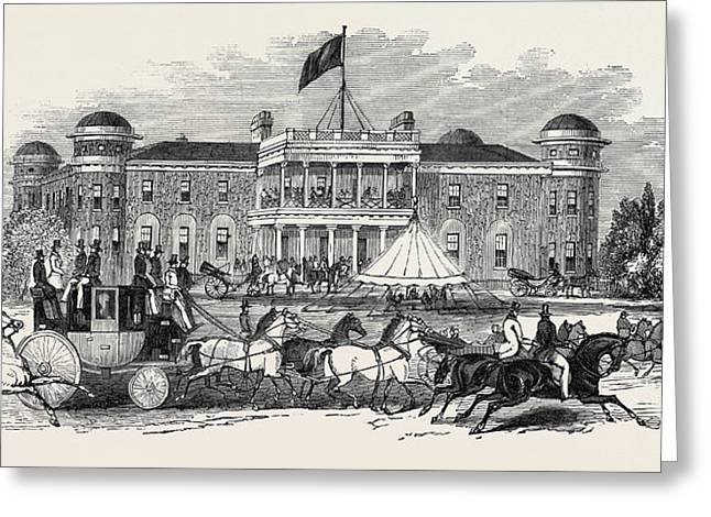 Goodwood House, Scene In The Park Greeting Card