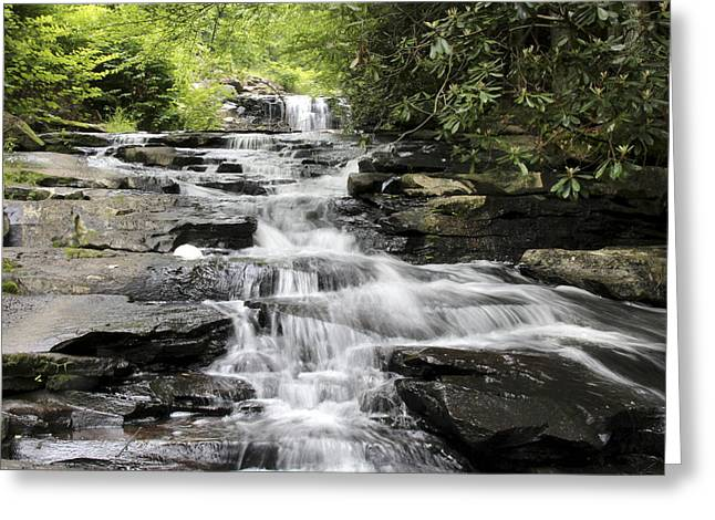 Goose Creek Falls Greeting Card