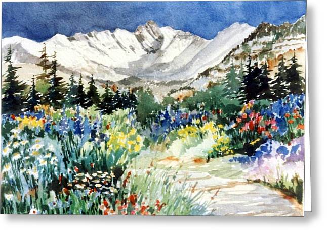 Gore Range Trail Greeting Card by Patty  Frierson