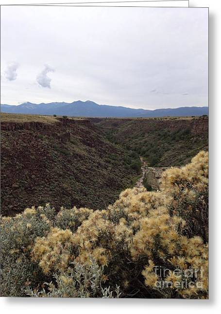 Gorge In Taos Greeting Card by Polly Anna