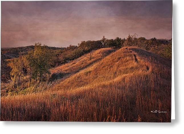 Gorgeous Daybreak Greeting Card by Jeff Swanson