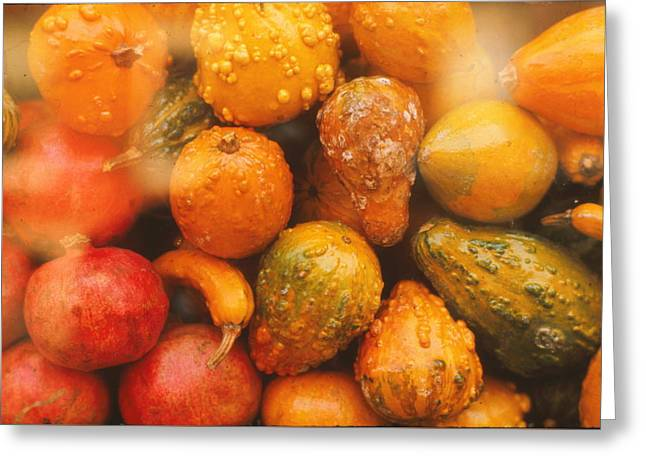 Greeting Card featuring the photograph Gorgeous Gourds by Ira Shander